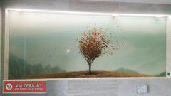 Valtera Картины из стекла 1 модульная