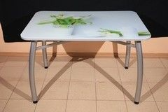 Обеденный стол Обеденный стол ИП Колеченок И.В. стекло с УФ-печатью 1100x700x22 (ножки Шелби дуо)