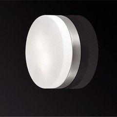 Настенно-потолочный светильник Odeon Light Presto 2405/2C