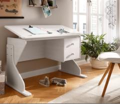 Письменный стол Диприз Парта Рио Д 4134