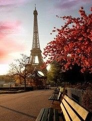 Фотообои Фотообои GreenBerry Парижское утро 026