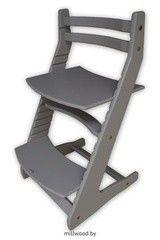 Детский стул Детский стул MillWood Вырастайка 2 серый