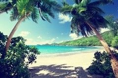 Фотообои Фотообои Vimala Остров Маэ