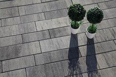 Тротуарная плитка Тротуарная плитка Galabeton Modern Riso