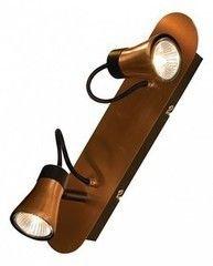 Настенно-потолочный светильник Lussole Loft LSL-6801-02