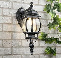 Уличное освещение Elektrostandard NLG9913-G черный