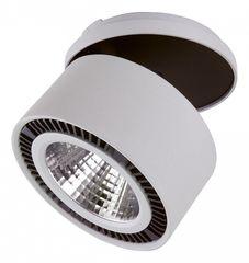 Светодиодный светильник LightStar Forte Inca 214820