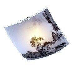 Настенно-потолочный светильник Blitz 2504-21