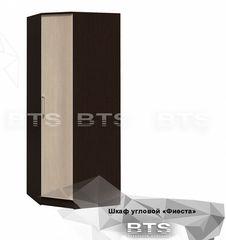BTS Фиеста (876x876x2216)
