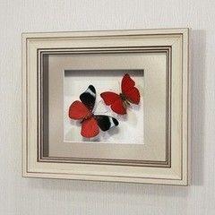 noname Бабочка Оживший цветок Панацеи и бабочка летающий самоцвет (169а)
