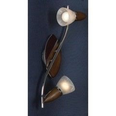 Настенный светильник Lussole Cisterino LSQ-6401-02