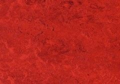 Линолеум Натуральный линолеум Forbo (Eurocol) Marmoleum Real 3127