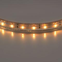 LightStar 402002