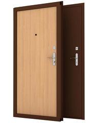 Входная дверь Входная дверь Строй-Гефест С-2