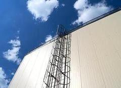 Элемент безопасности кровли Borge Вертикальная пожарная лестница П1-1 (П1-2)