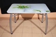 Обеденный стол Обеденный стол ИП Колеченок И.В. стекло с УФ-печатью 1100x800x22 (ножки Шелби дуо)