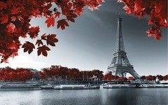 Фотообои Фотообои Vimala Эйфелева башня (красные листья)