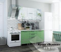 Кухня Кухня BTS Бьянка 1.5