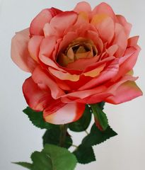 Orlix Роза 06-137-O
