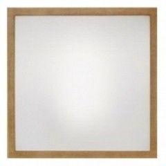 Настенно-потолочный светильник Linea Light Frame 71907
