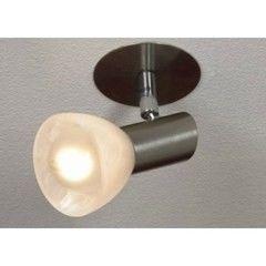 Настенно-потолочный светильник Lussole Leggero LSQ-4100-01