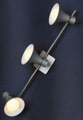 Настенно-потолочный светильник Lussole Monterado LSL-7201-03