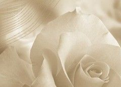 Плитка Плитка Березакерамика Богема Роза 1 25х35