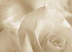 Плитка Бежевая плитка Березакерамика Богема Роза 1 25х35