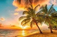 Фотообои Фотообои Vimala Остров Барбадоса