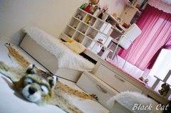 Детская комната Детская комната BlackCat с подиумом и выдвижной кроватью