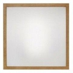 Настенно-потолочный светильник Linea Light Frame 71910