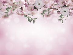 Фотообои Фотообои Art-oboi 190085902