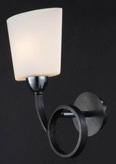 Настенный светильник Maytoni Eurosize 2 TOC002-01-N